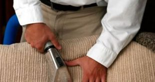 12+ Wonderful Upholstery Cleaning Diy Ideas - Lessons - Learning