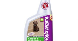 Rejuvenate 32 oz. Carpet and Upholstery Spot and Stain Remover-RJ32CU