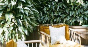 Velvet Furniture Inspirations // Sofa