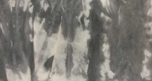 Velvet Upholstery Fabric - Groovy - Charcoal - Tie Dye Velvet Upholstery Fabric & Pillow Fabric by the Yard - Available in 10 Colors